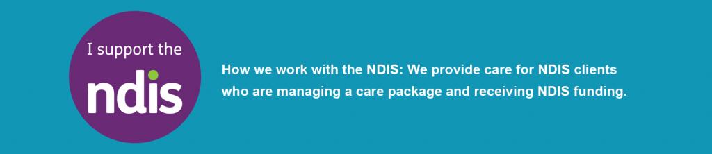 NDIS new logo art